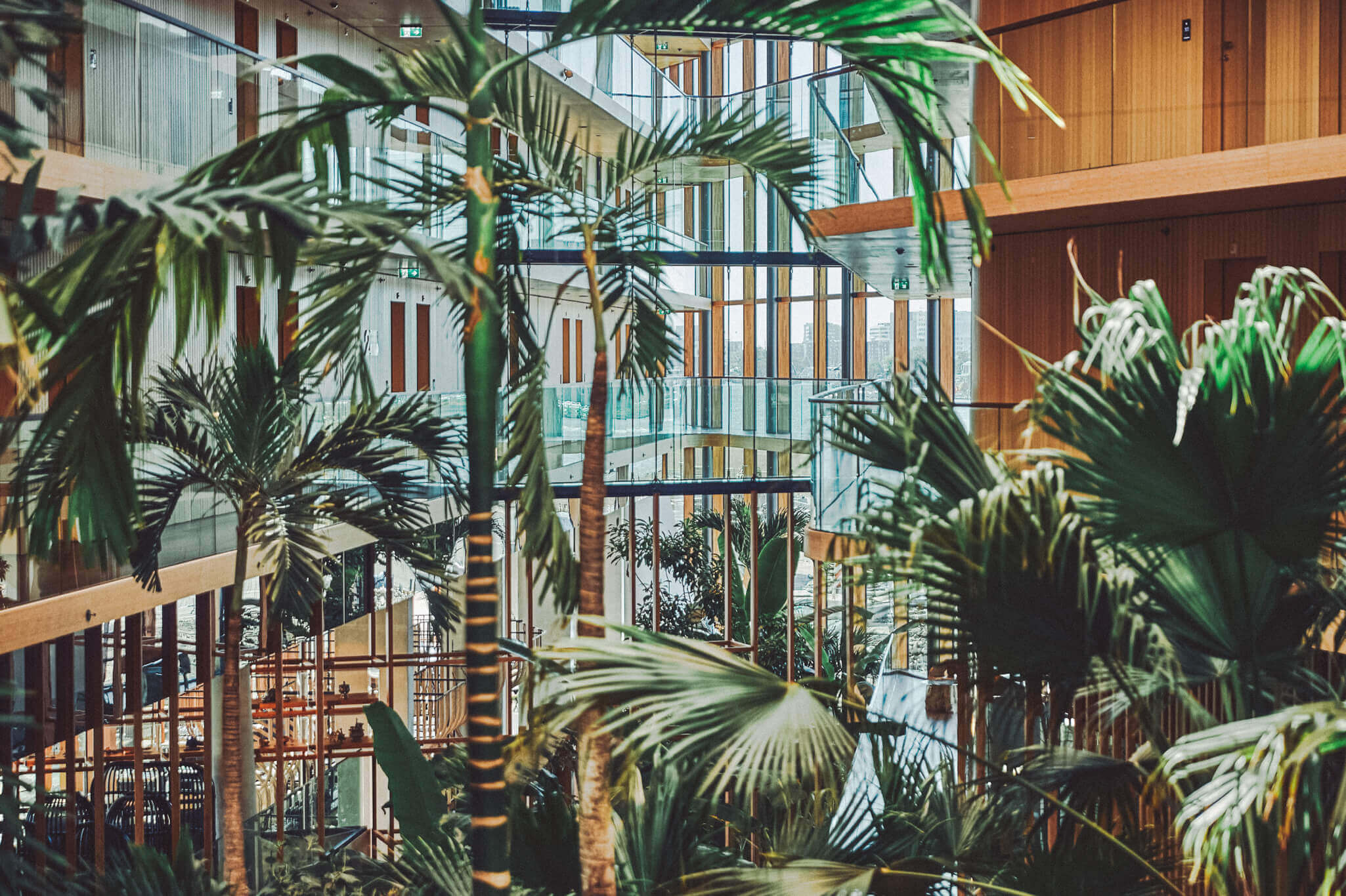 HOTELNACHT SUMMER EDITIE AMSTERDAM 2020: STAYCATION IN EIGEN LAND