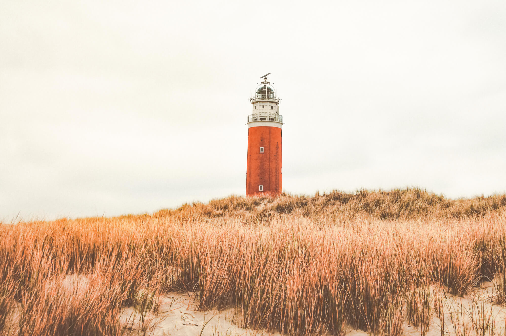 Texel city Guide